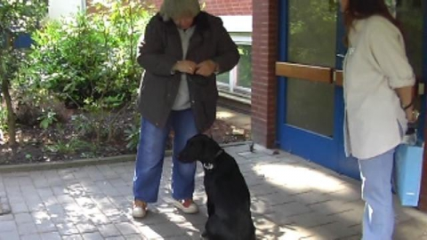 Donna in der Arbeit mit Patienten